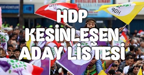 HDP kesin aday listesi 2018