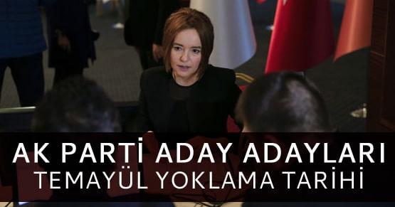 Ak Parti aday adayları için Temayül Yoklaması tarihini açıkladı