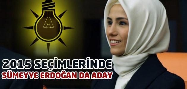 2015 Seçimlerinde Mecliste Yine Erdoğan Olacak!